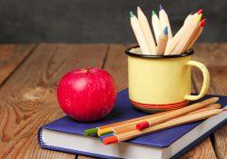 SP: investimento em Educação abaixo do constitucional