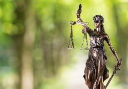 Comemoramos o Dia do Advogado juntos com os nossos clientes